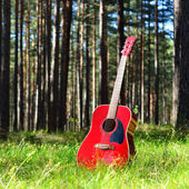 Guitar acoustic in the grass in the forest — Stockfoto