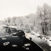 Winter river and hoar-frost on trees — Stock Photo