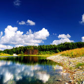 Colorful landscape with lake and forest. Latvia — Stock Photo