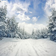 Winter scene: road and forest with hoar-frost on trees — Stock Photo #32831331