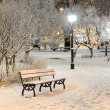 Snow on trees in Riga park by night — Stock Photo #32831347