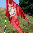 Medieval knight banner in the field — Stock Photo