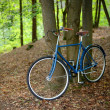 Stock Photo: Old vintage blue bicycle in forest