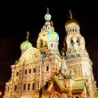 Church of the Savior on Blood in Sait Petersburg by night — Stock fotografie