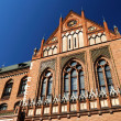 Latvian academy of arts — Stockfoto