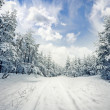 Winter scene: road and forest with hoar-frost on trees — Stock Photo #32835237