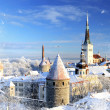 Tallinn city. Estonia. Snow on trees in winter — Stock Photo