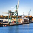 Cargo cranes at the port — Stock Photo