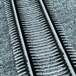 Railroad track close-up — Stock Photo #32838261