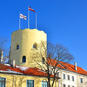 President castle in Riga, Latvia — Stock Photo