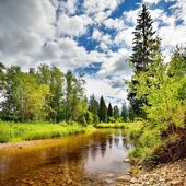 Forest river landscape against sky and clouds — Stock Photo