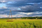 Zelené pole proti temné bouřlivé mraky — Stock fotografie
