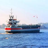 Cargo ship arriving in port — Stock Photo