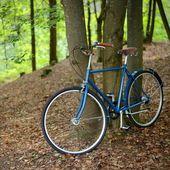 在森林里的旧老式蓝色自行车 — 图库照片
