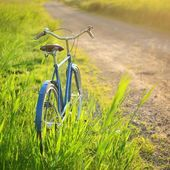 Old vintage blue bicycle on a road in a rural area — Stock Photo