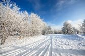 Road and hoar-frost on trees in winter — Stock Photo