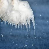 Icicles close-up at the sea shore — Stock Photo