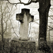 Cross in fog at the cemetery — Stock fotografie