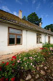 Old european building and roses — Stock Photo