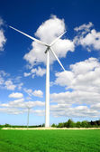 Wind turbines at the meadow against blue sky — Foto Stock