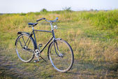 Old dutch retro bicycle on the field of flowers — Stock Photo