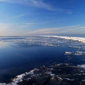 Frozen sea — Stock Photo