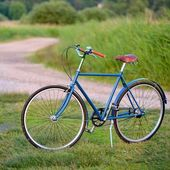 Old vintage blue bicycle in a rural area — Stock Photo