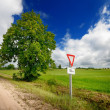 Green field and the road sign on a country road against stormy sky — Stock Photo