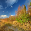 Autumn landscape against blue sky — Stock Photo
