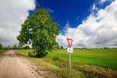 Green field and the road sign on a country road against stormy sky — Foto de Stock