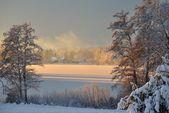 Beautiful frozen winter lake landscape in Latvia — Stock Photo