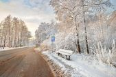 Road and a snow covered trees in Latvia — Stockfoto
