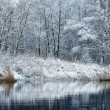 Beautiful winter lake landscape in Latvia — Stock Photo