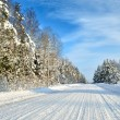Road in a countryside in sunny winter day. Classic snow covered winter landscape — Stock Photo #38697347