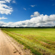 Road and cereal field against dark stormy clouds — Stock Photo #38697575