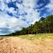 Baltic sea shore in Latvia — Stock Photo