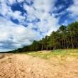 Baltic sea shore in Latvia — Stock Photo