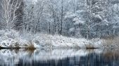 Beautiful winter lake landscape in Latvia — Fotografia Stock