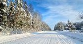 在阳光明媚的冬日农村道路。经典雪覆盖冬季景观 — 图库照片