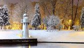 雪树里加公园和灯塔上 — 图库照片