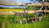Old vintage brown bicycle near the fence of a flower field. — Stock Photo