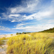 Baltic sea shore sandy beach — Stock Photo