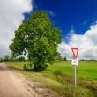 Green field and the road sign — Stock Photo