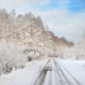 Road in a countryside in sunny winter day — Stock fotografie