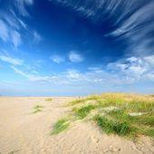Baltské moře pobřeží písečná pláž — Stock fotografie