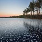 Frozen lake winter sunrise landscape — Stock Photo #50522741
