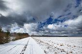 フィールド上の重い雪嵐雲 — ストック写真