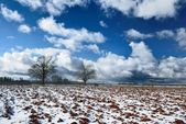 Heavy snow storm clouds over fields — Stock Photo