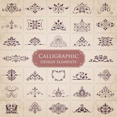 Calligraphic design elements - set 1 — Stock Vector