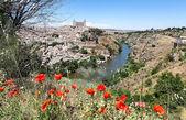 Landscape. Toledo — Stock Photo